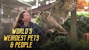World's Weirdest Pets & People thumbnail