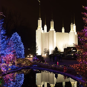 Mormon Temple at night with reflection by Mike Mulligan - Buildings & Architecture Places of Worship ( lights, reflection, mormon temple, night,  )