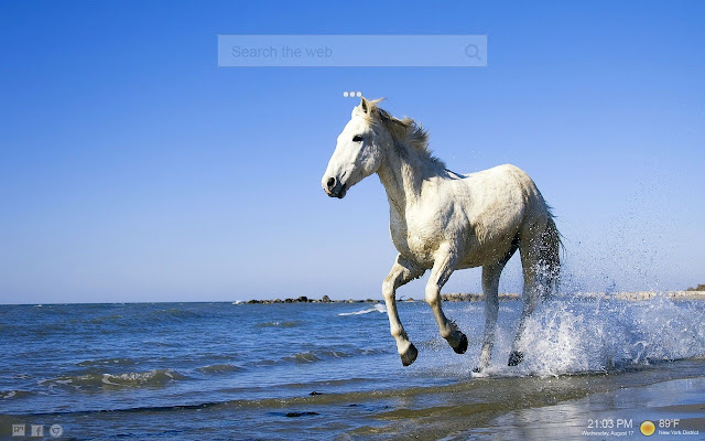 Horse Wallpapers & Horse Games