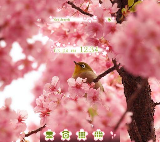 Bird & Cherry Blossoms Theme 1.0.0 Windows u7528 1