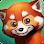 My Red Panda - The cute animal simulation