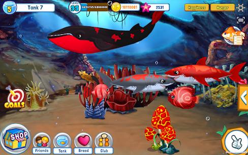 Fish Adventure Seasons 5