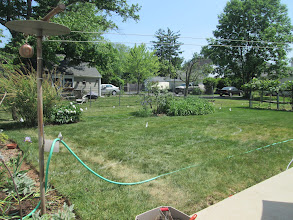 Photo: Our first 2015 rain garden is in the ground! Here is a before photo.