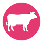 Livestock, auction & beef News