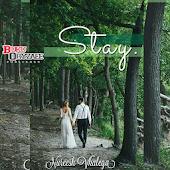 Novel Cinta Stay