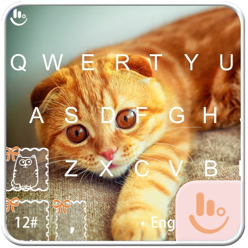 Exotic Kitty Keyboard Theme
