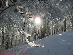 Photo: IMG_9923 sole e ghiaccio