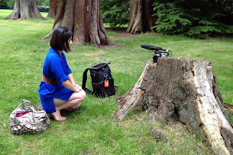Photo: Using a tree stump as a tripod since their real one got stolen. :(