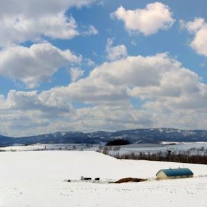 デミオ DE5FS スポルト 2008年式のカスタム事例画像 やま ヨモブラウン(DE連合)さんの2020年03月21日07:00の投稿