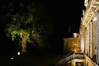 Photo: Le Platane d'Orient et le Château