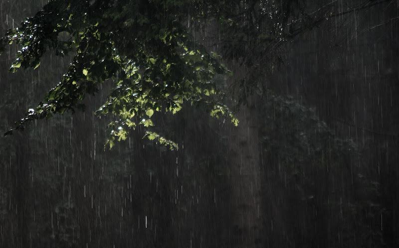 acquazzone estivo di i1rsv