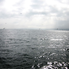 The North Sea by Petre Miuta - Artistic Objects Other Objects