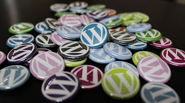 Wordpress fits well with self hosting of blogs.