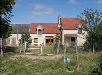 maison à Villecelin (18)