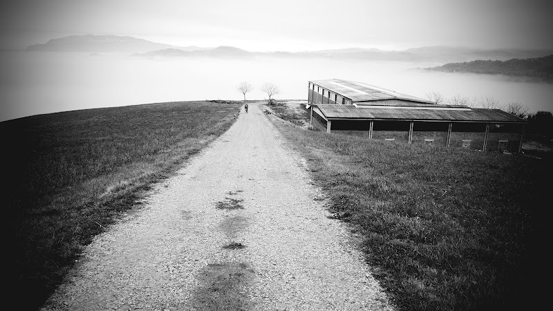 Road to heaven di Olivieri Mario