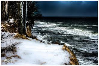 Photo: Rotkehlchen und das Meer