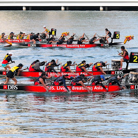 Dragon Boat Race #2 by Koh Chip Whye - Sports & Fitness Other Sports