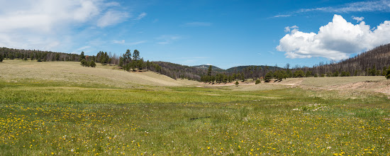Photo: Half of panorama; Valles Caldera Nat'l. Preserve