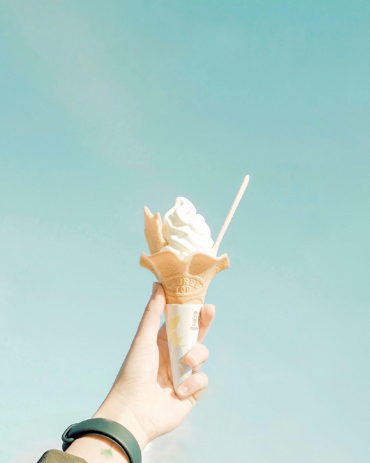 Loạt trải nghiệm mùa hè đỉnh như anime Nhật Bản: Bắt bọ cánh cứng, ngắm đom đóm trong rừng và ăn kem cho đến khi nào nổ não thì thôi! - Ảnh 12.