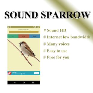 Sparrow - náhled