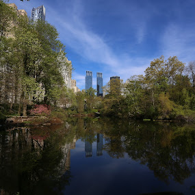 New York City In Spring by VAM Photography - City,  Street & Park  City Parks ( places, nyc, morning, central park, spring,  )