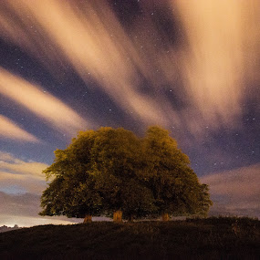 At the top of Wyndham Hill  by Lorraine Paterson - Landscapes Cloud Formations ( clouds, hill, uk, england, somerset, stars, yeovil, trees, photography )