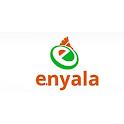 E.Nyala icon