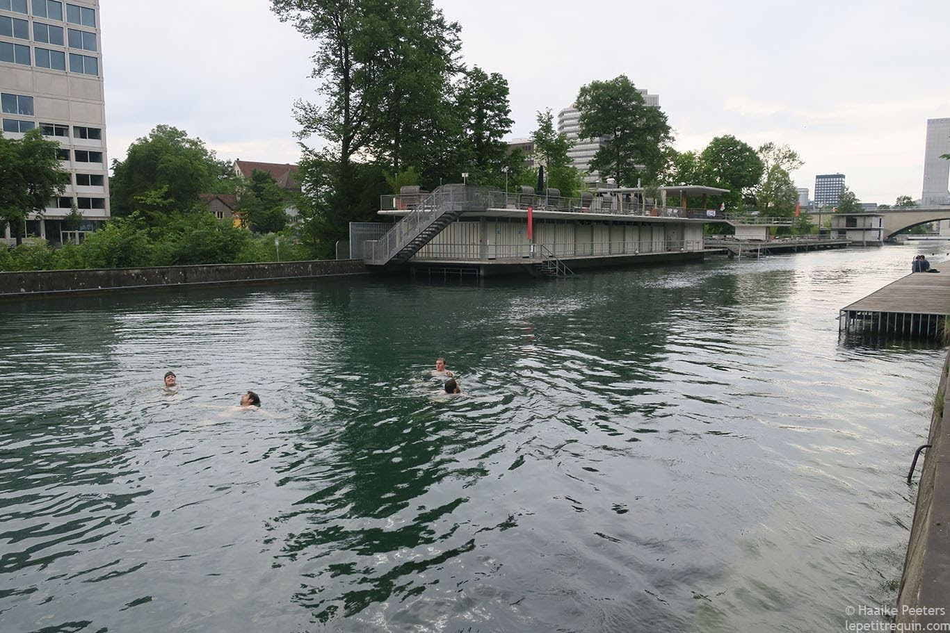 Limmat Zürich (Le petit requin)