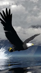 Eagle Wallpapers for PC-Windows 7,8,10 and Mac apk screenshot 5