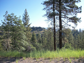 Photo: View from Hobo Camp Road onto Inspiration Point