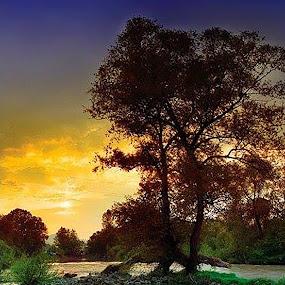 by Milos Krsmanovic - Landscapes Sunsets & Sunrises