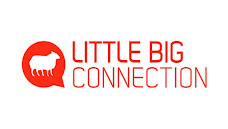 little-big-connection-outil sas collaboration saas france
