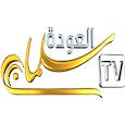 قناة سلمان العودة الفضائية icon
