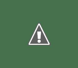 Photo: Brahminy wiith prey