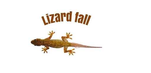 Lizard Fall - Apps on Google Play