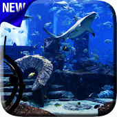 Aquarium Video Live Wallpaper