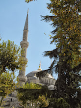 Photo: Blue Mosque... with trees