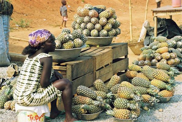 La signora degli ananas di paolo-spagg
