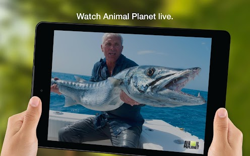 Animal Planet GO- screenshot thumbnail