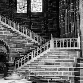 Cathedral in Liverpool by Cora Lea - Black & White Buildings & Architecture (  )