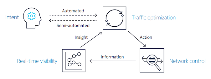 The insight-driven automation loop