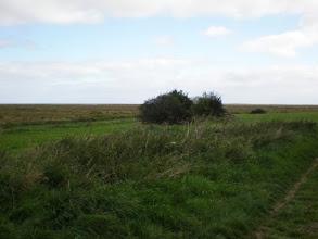 Photo: Norfolk Coast Path - From Warham to Wiveton - Warham Green
