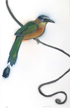Photo: Pochoir Blue-crowned Motmot, 23 high by 14.5 wide