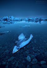"""Photo: """"Floating Sculptures"""" 