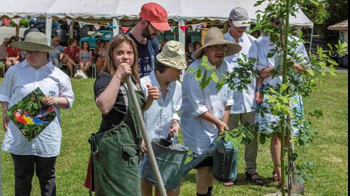 jardinage évènement 20 ans plante