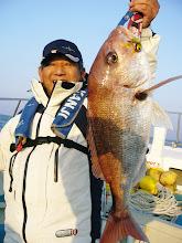 Photo: おほほー! 3.3kgの良型の真鯛でしたー!