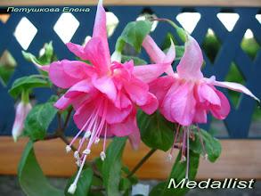 Photo: Medalist