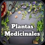 Medicinal Plants and Natural Medicine Icon