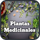 Medicinal Plants and Natural Medicine (app)