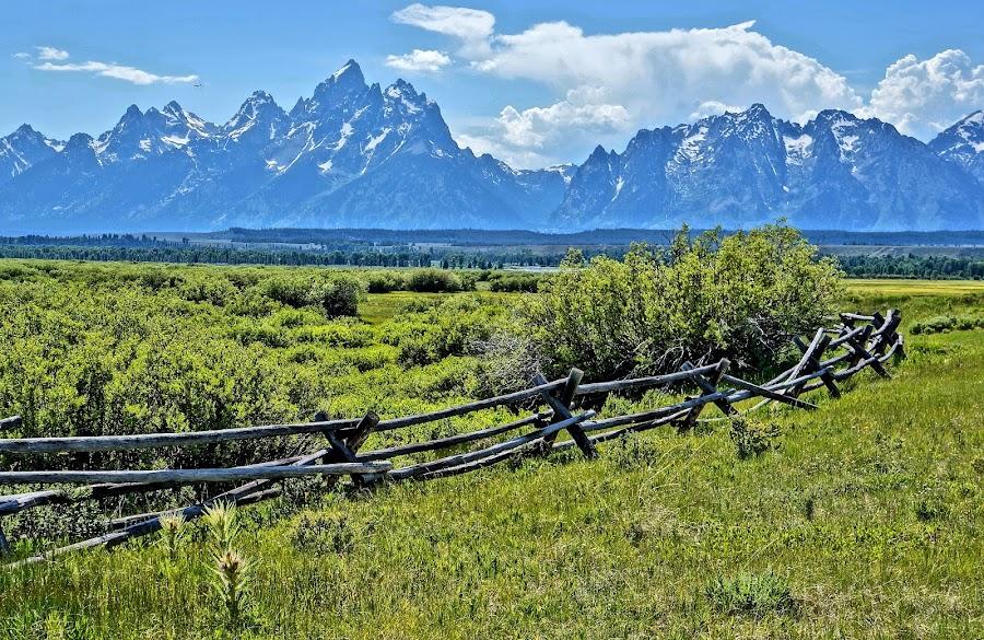 Mountains and Plains by Jim Czech - Landscapes Mountains & Hills ( fence, mountains, mountain, range, valley, tetons,  )